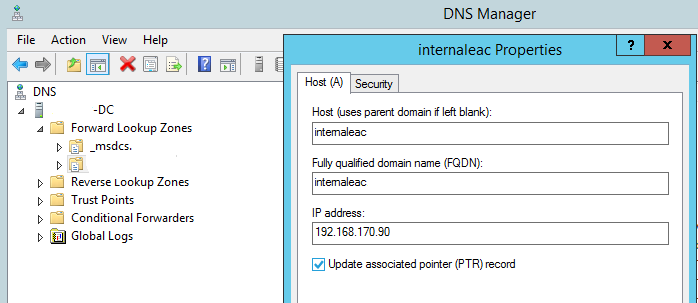 DNS manager window